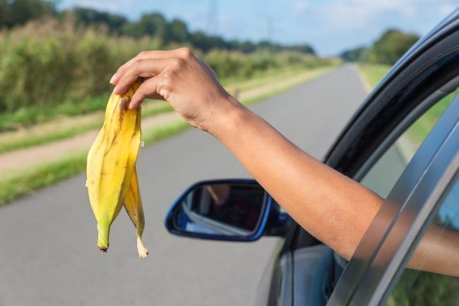 Litter from car (stock image)