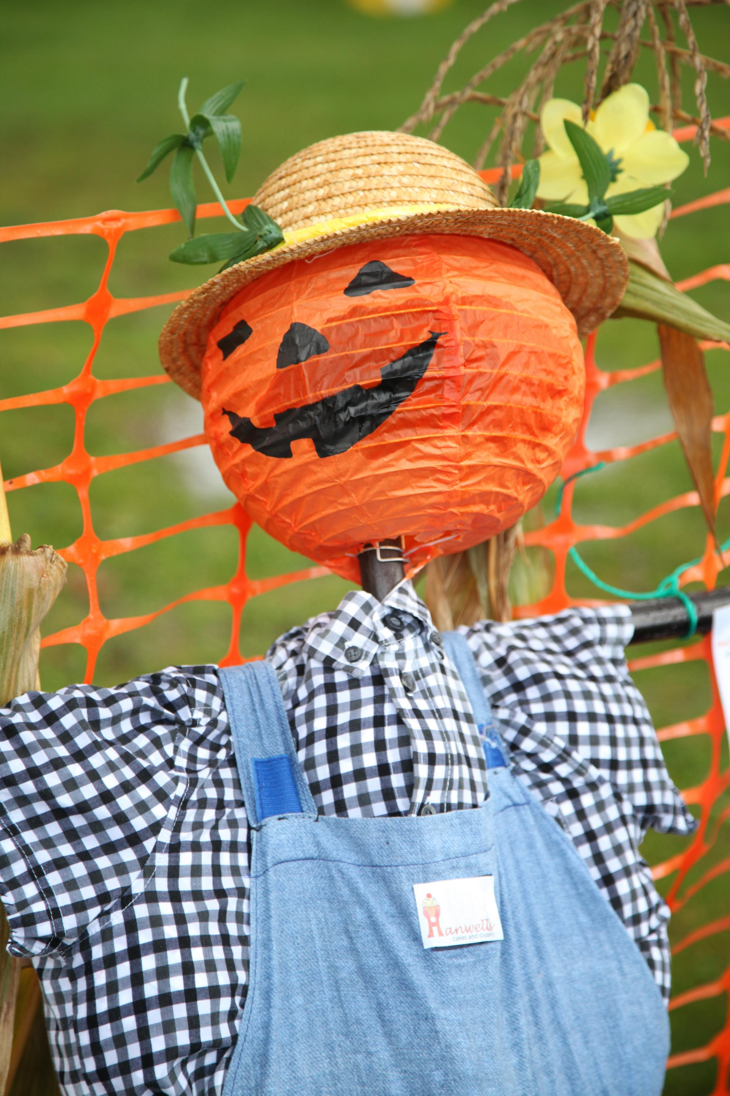 11/10/14 - at the annual JST Pumpkin Festival and Scarecrow Avenue at Royal Victoria Country Park, Netley, Southampton. Photo: Ian Hinchliffe.