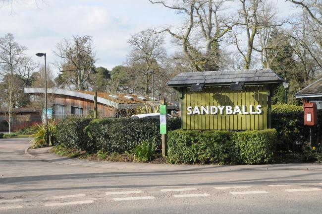 Sandy Balls in the New Forest