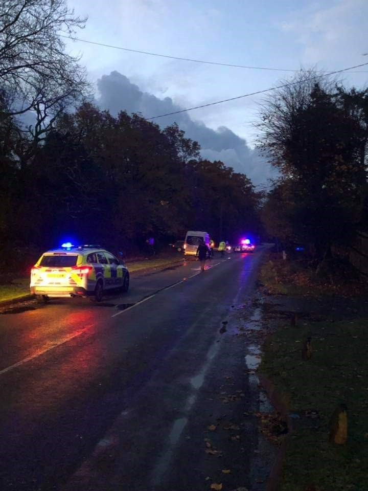 Police at the scene where two horses were killed after being struck by a van