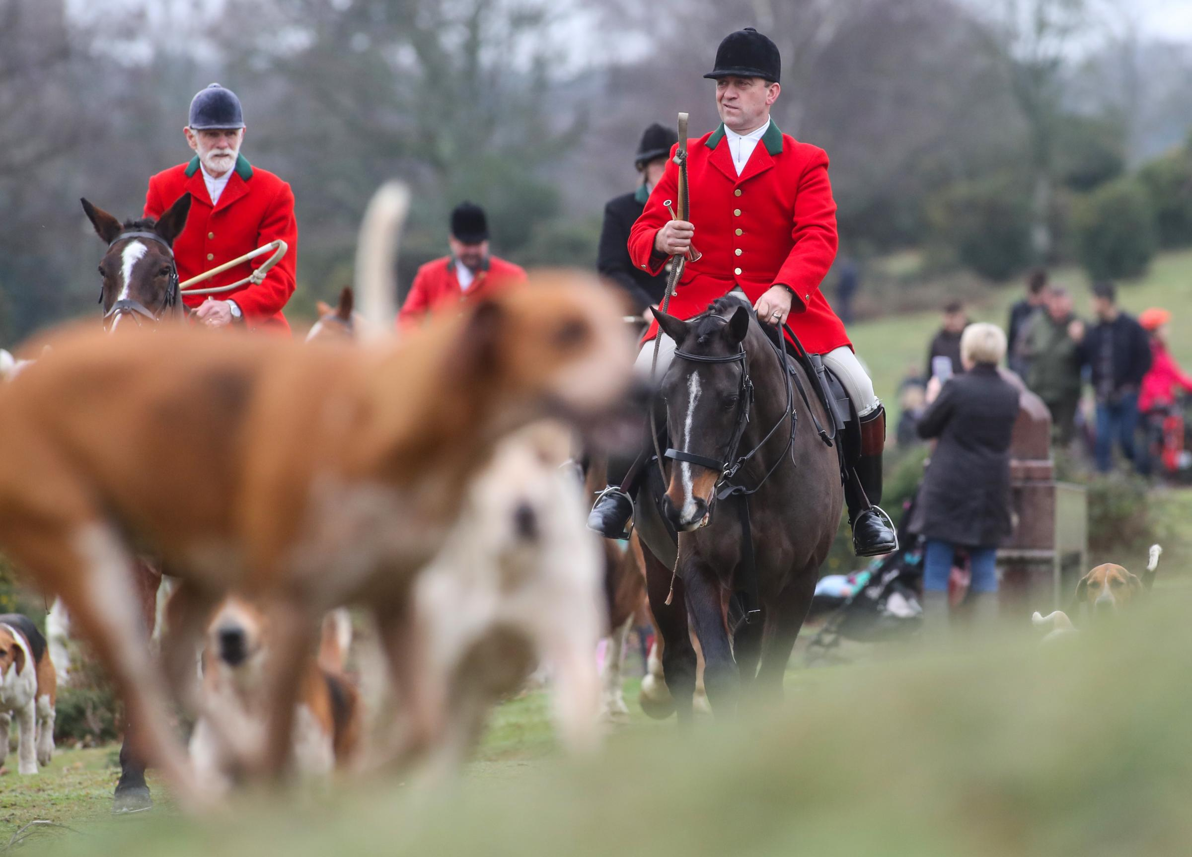 New Forest Boxing Day Hunt at Bolton's Bench in Lyndhurst.
